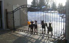 Wrought_Iron_Estate_gate_17_jpg