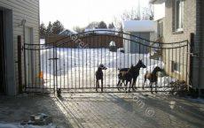 Wrought_Iron_Estate_gate_19_jpg