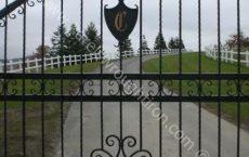 Wrought_Iron_Estate_gate_34_jpg