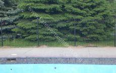 Wrought_Iron_Fence_133_jpg