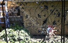 Wrought_Iron_Gate_139_jpg